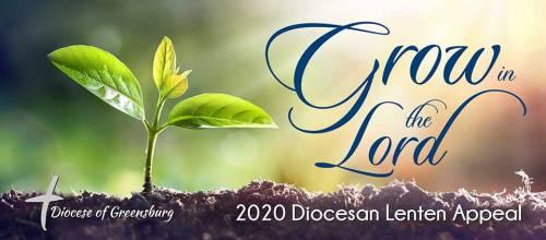 DLA 2020 Banner